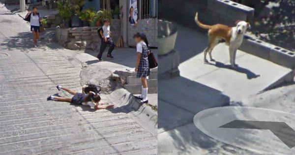 سيارة خرائط Google تلتقط سقوط فتاة في سانتا كاتارينا NL وتنتشر بسرعة